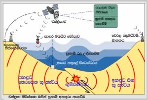 Ysunami warning system