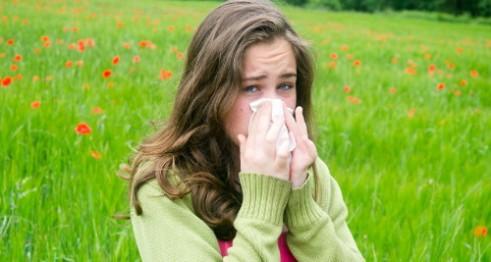 860-header-allergies-iStock_000060681510_Large