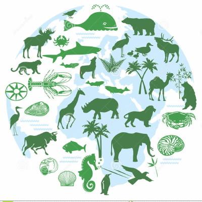 animals-biodiversity-28900966