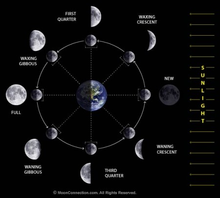 moon_phases_diagram