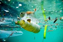 horrifying-water-pollution-facts-picture