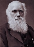 charles_darwin_photograph_by_herbert_rose_barraud_1881